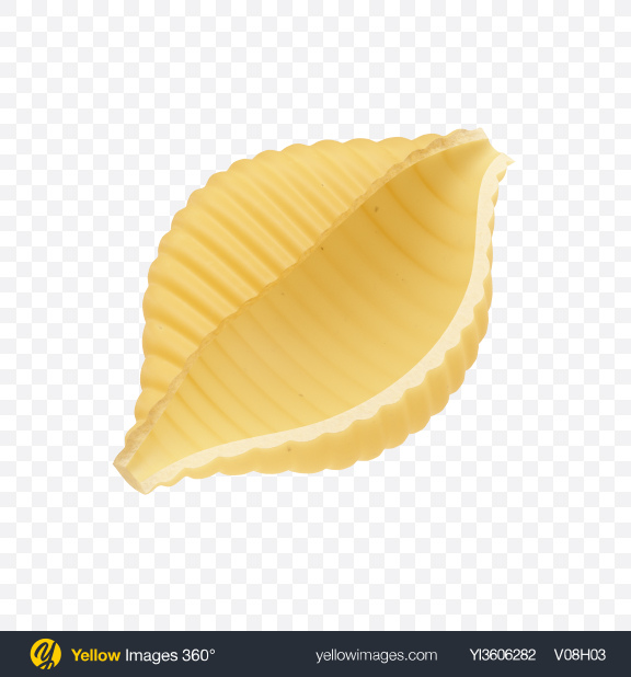 Download Conchiglie Rigate Pasta Transparent PNG on PNG Images