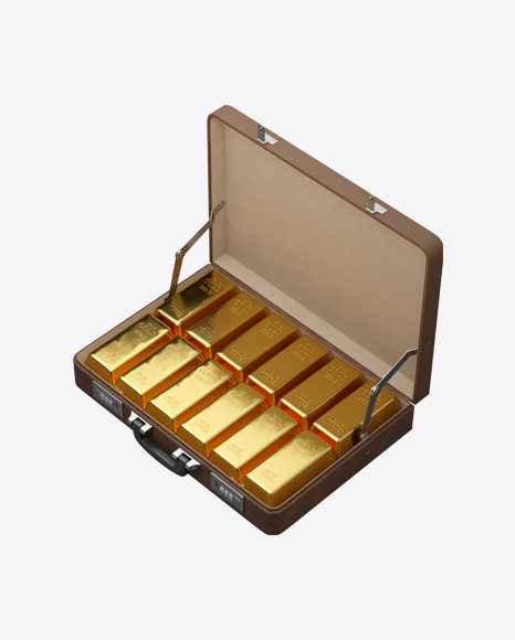 Leather Case with Gold Bars