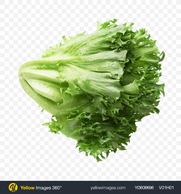Download Frillis Salad Transparent PNG on YELLOW Images