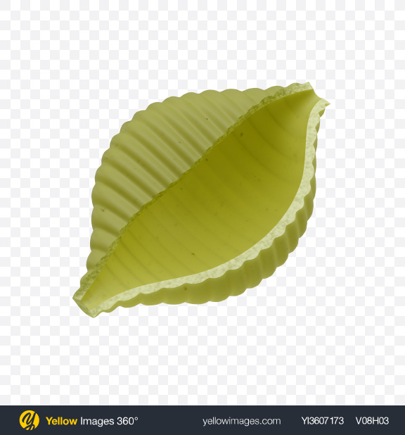 Download Green Conchiglie Rigate Pasta Transparent PNG on YELLOW Images