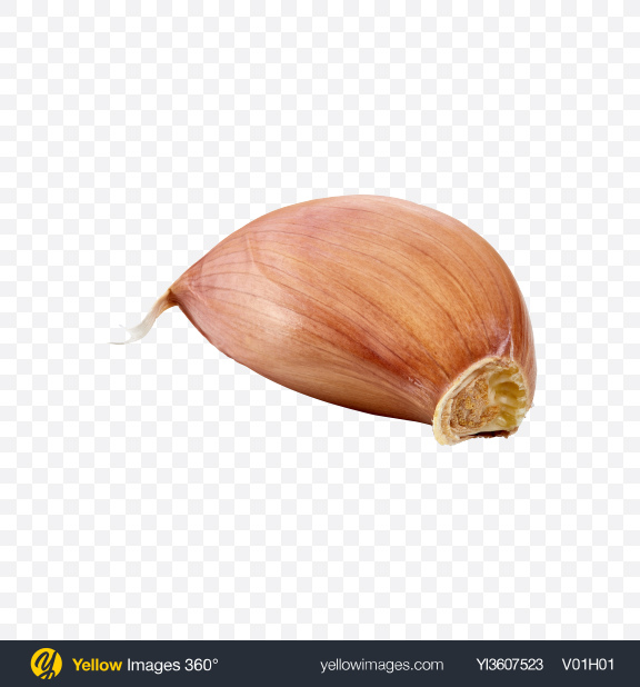 Download Garlic Clove Transparent PNG on YELLOW Images