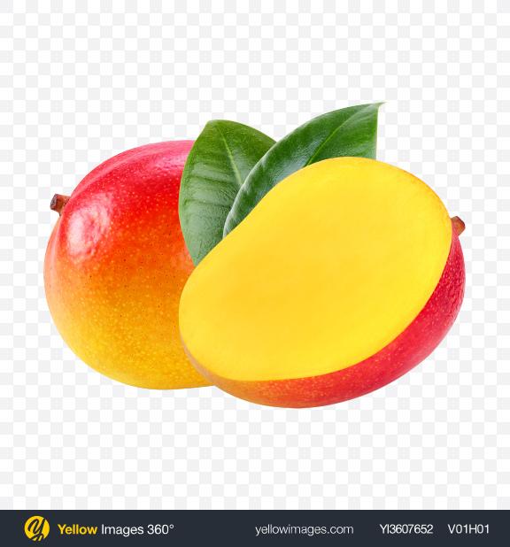 Download Mango Set Transparent PNG on YELLOW Images