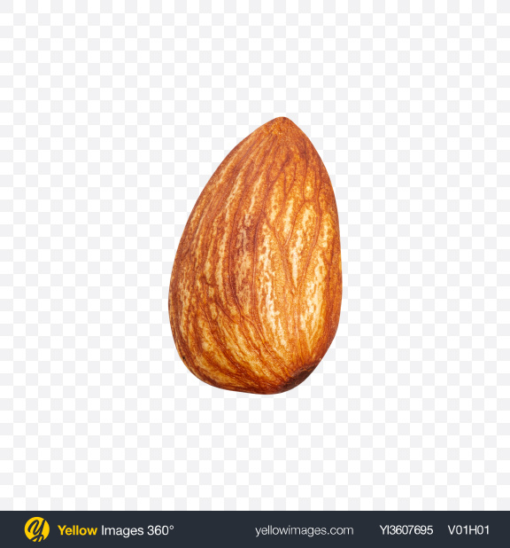 Download Almond Nut Transparent PNG on YELLOW Images