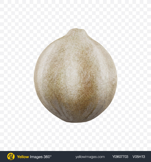 Download White Peppercorn Transparent PNG on PNG Images