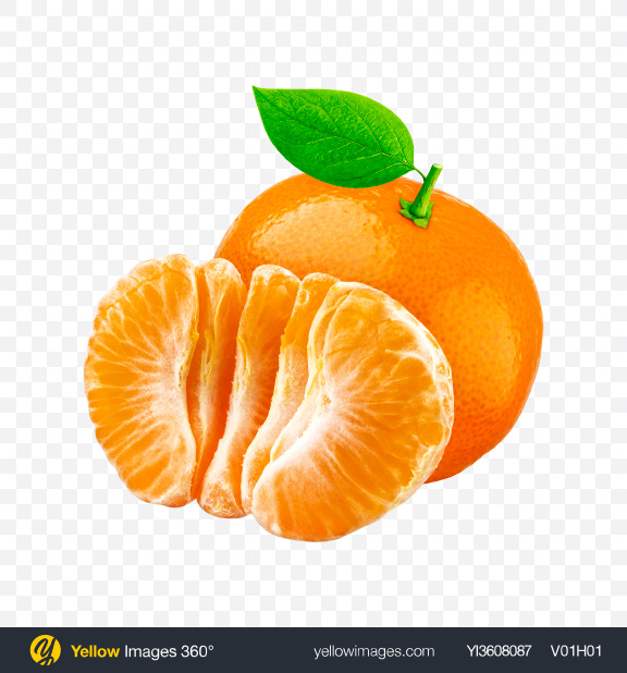 Download Mandarin Oranges Transparent PNG on YELLOW Images