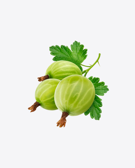 Green Goosberry