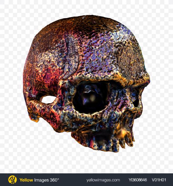 Download Metal Skull Transparent PNG on PNG Images