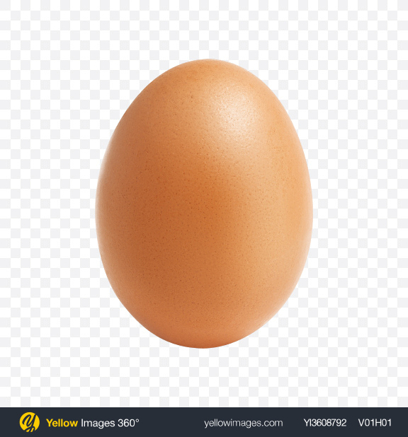 Download Chicken Egg Transparent PNG on PNG Images