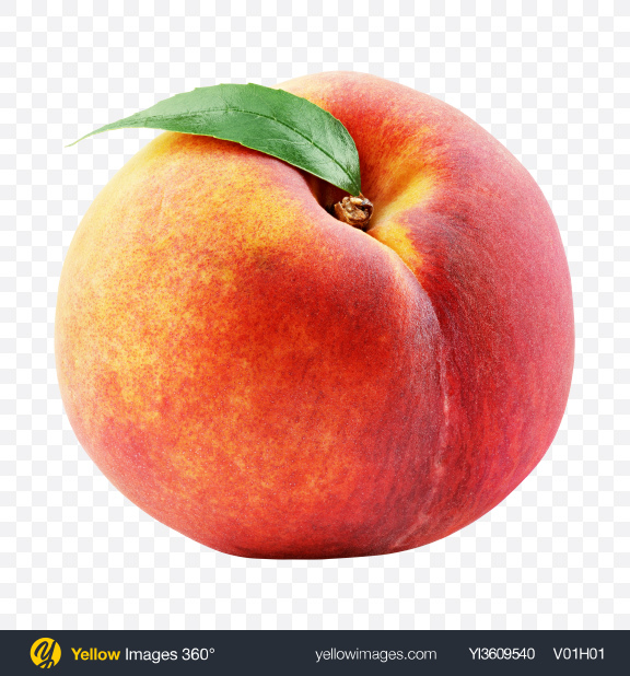 Download Peach with Leaf Transparent PNG on YELLOW Images