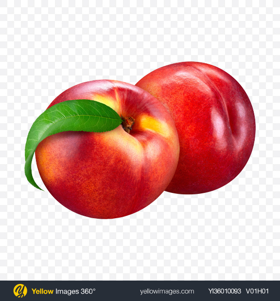 Download Two Nectarines Transparent PNG on YELLOW Images