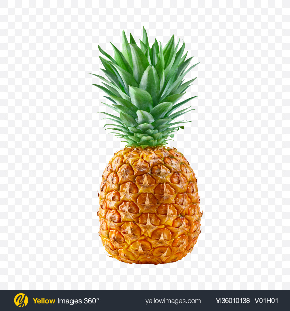Download Pineapple Transparent PNG on YELLOW Images