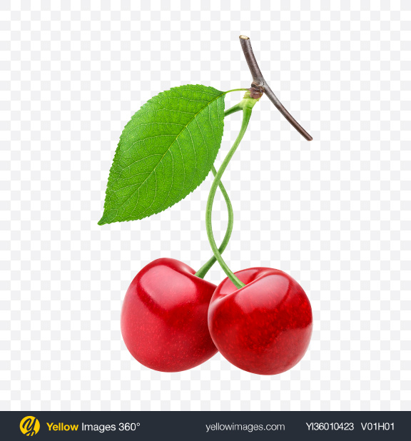 Download Cherries Transparent PNG on YELLOW Images