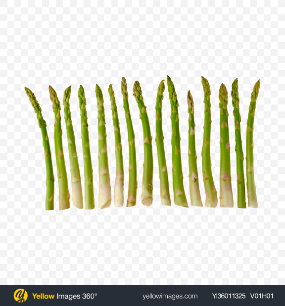 Download Stems of Asparagus Transparent PNG on YELLOW Images