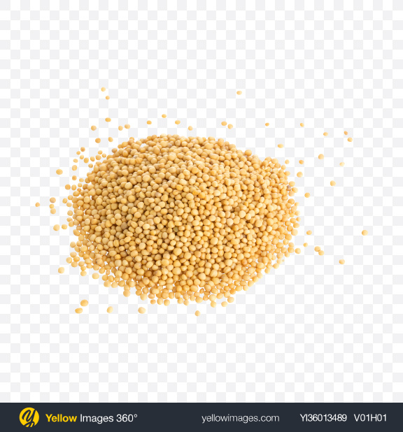Download Pile of Millet Grains Transparent PNG on YELLOW Images