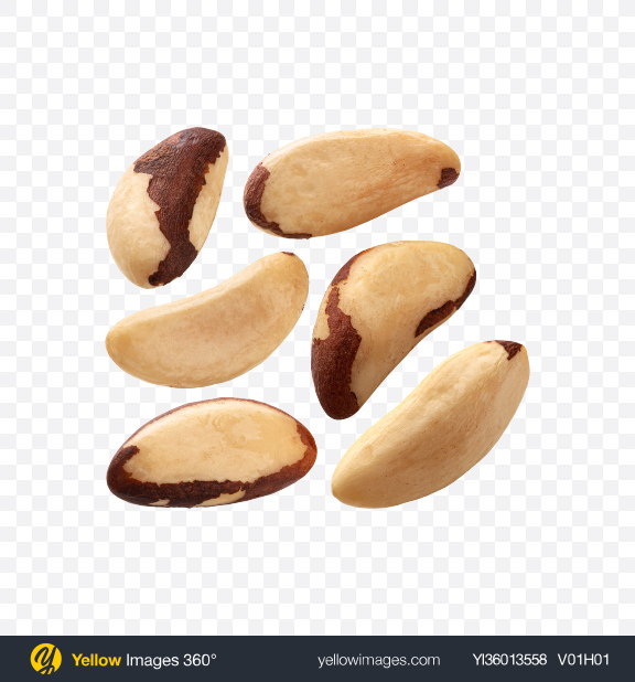 Download Brazil Nuts Set Transparent PNG on YELLOW Images