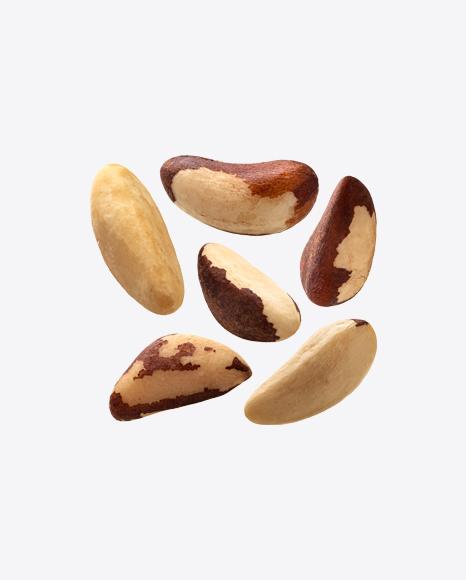 Brazil Nuts Set