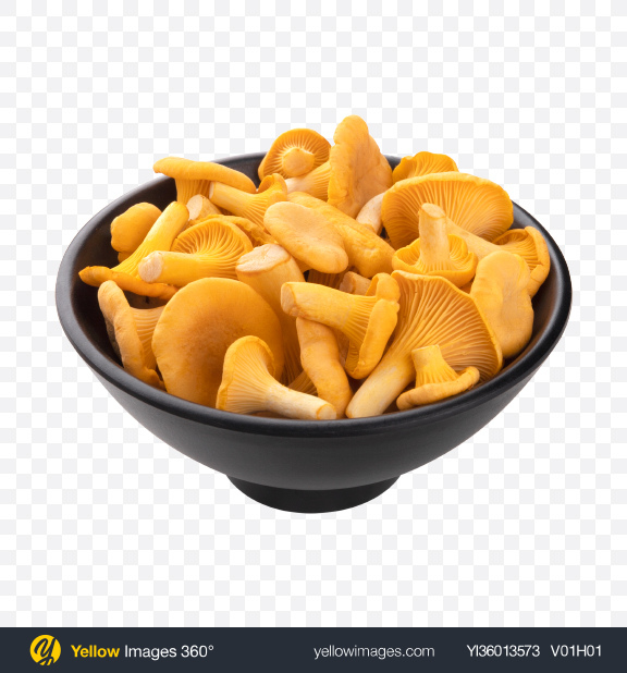 Download Chanterelle Mushroom in Ceramic Bowl Transparent PNG on YELLOW Images
