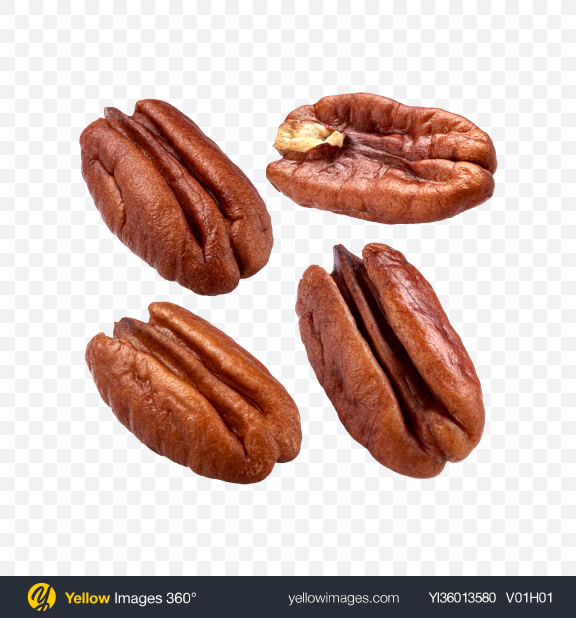 Download Pecan Nuts Set Transparent PNG on YELLOW Images