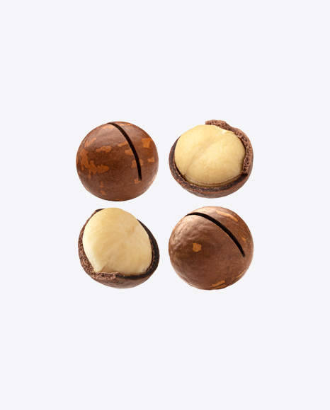 Macadamia Nuts Set