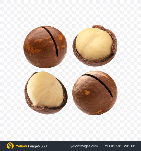 Download Macadamia Nuts Set Transparent PNG on YELLOW Images