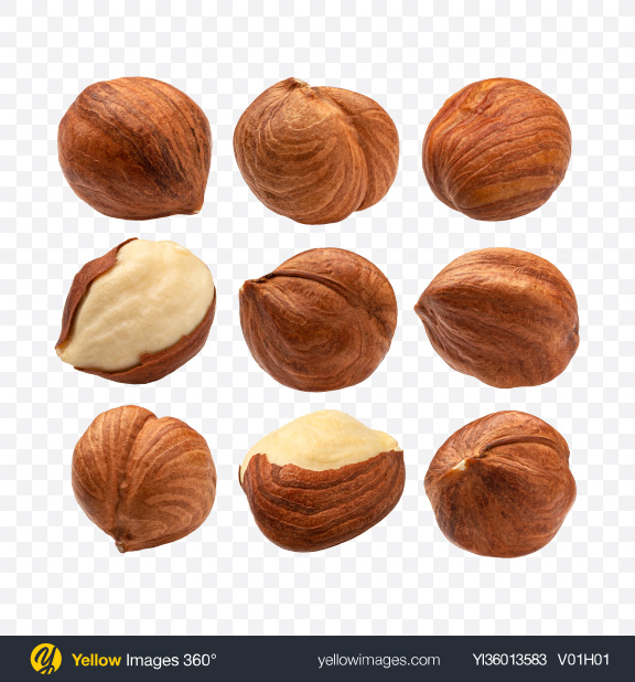 Download Hazelnuts Set Transparent PNG on YELLOW Images