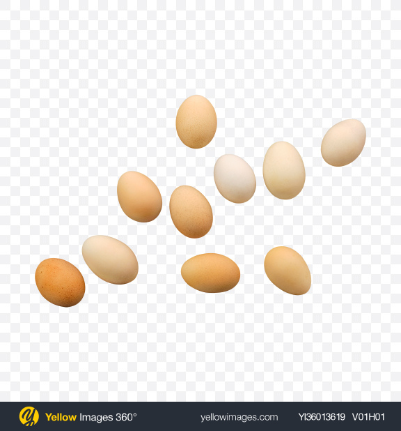 Download Chicken Eggs Transparent PNG on YELLOW Images