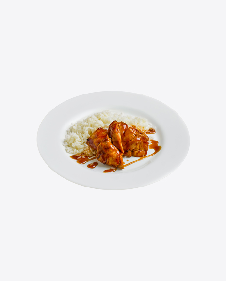 Rice w/ Teriyaki Chicken