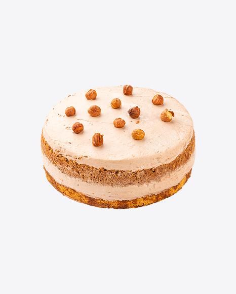 Hazelnut Tiramisu Cake w/ Curd Cream