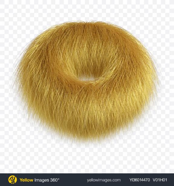 Download Blonde Fur Torus Transparent PNG on YELLOW Images