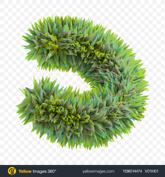 Download Green Fur Shape Transparent PNG on YELLOW Images
